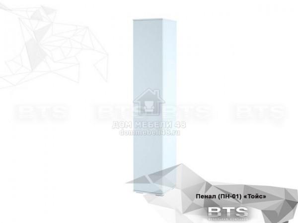 """Пенал """"Тойс"""" (ПН-01) 0,4м ЛДСП производитель: БТС"""
